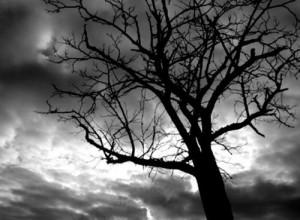 suicide-sin-300x220